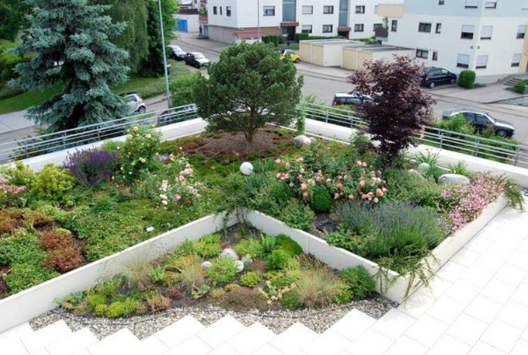 dachbegr nung sievers garten landschaftsbau. Black Bedroom Furniture Sets. Home Design Ideas